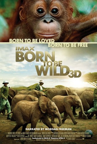 Watch Born to Be Wild Online