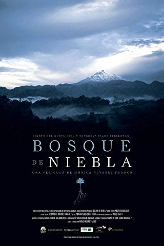 Watch Bosque de Niebla Online