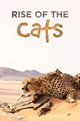 Watch Cats: An Amazing Animal Family Online