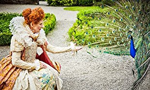 Watch Elizabeth I's Secret Agents Online