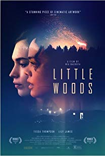 Watch Little Woods Online