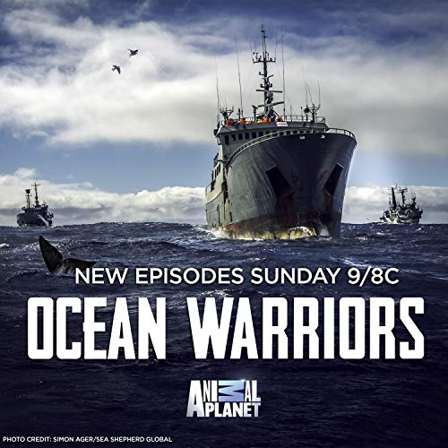 Watch Ocean Warriors Online