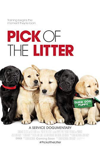 Watch Pick of the Litter Online