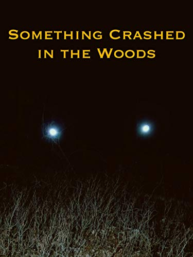 Watch Something Crashed in the Woods Online