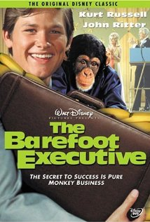 Watch The Barefoot Executive Online