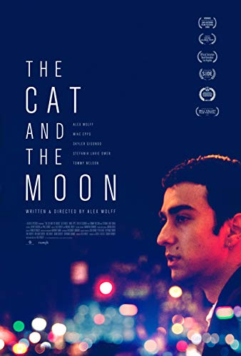Watch The Cat and the Moon Online