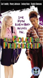 Watch The Color of Friendship Online