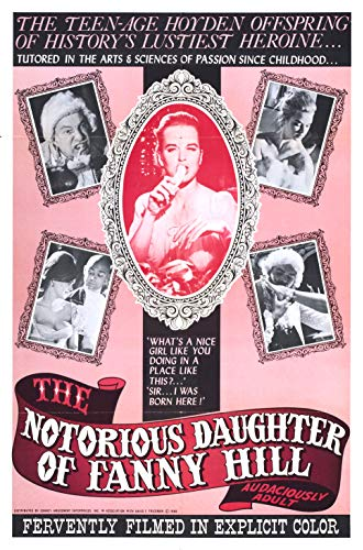 Watch The Notorious Daughter of Fanny Hill Online