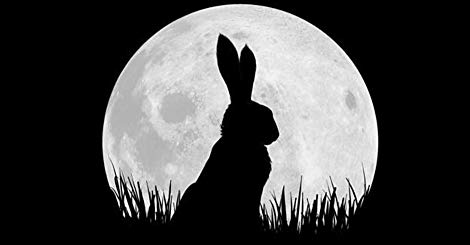 Watch Watership Down Online