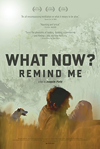Watch What Now? Remind Me Online